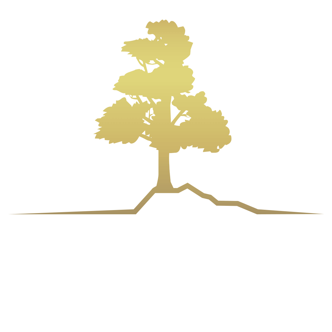 Akra Property Investment