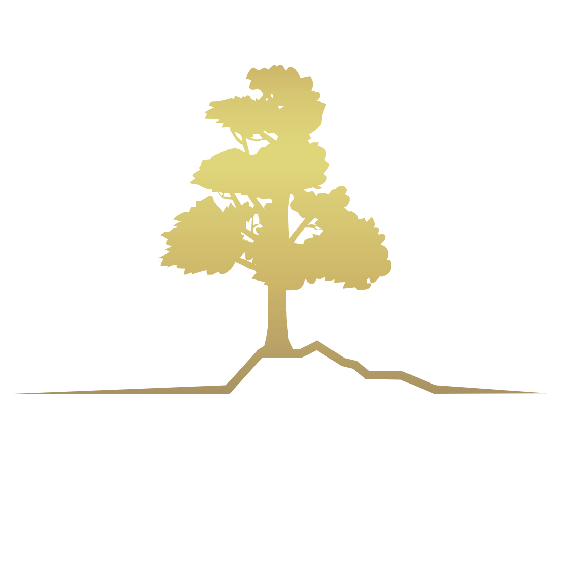 Akra Layan Private Pool Villas For Investment in Phuket